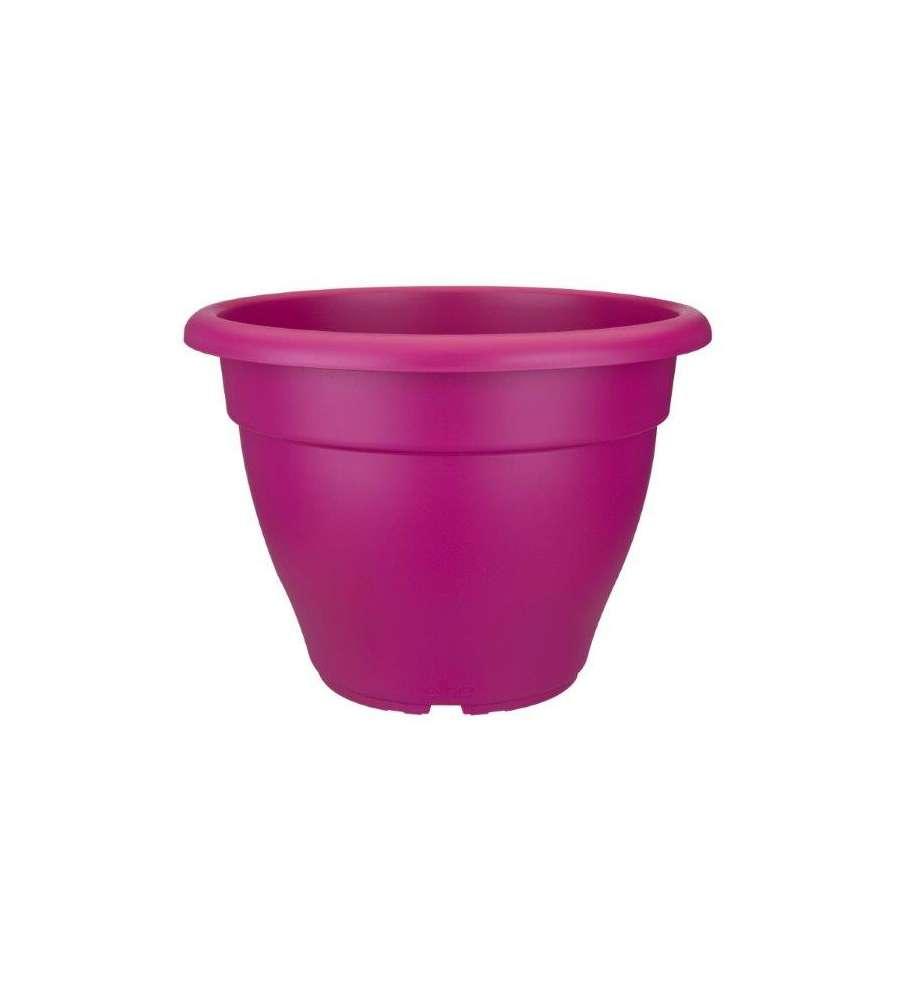 Coltivare Lamponi In Vaso vaso campana lampone ? 30 x 21, 5h cm